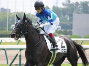 有馬記念2016 ヴィブロス