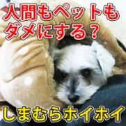 shimamurahoihoi